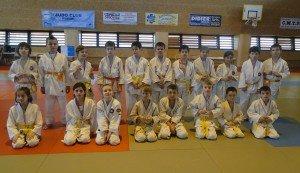 2ème Animation pour les jeunes judokas dans Saison 2012-2013 dsc06538-300x173
